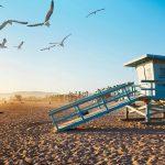 LA Beach Picnic